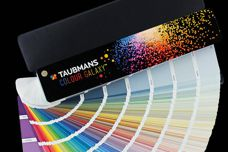 Colour Galaxy Fandeck by Taubmans