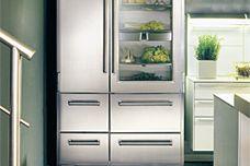 Sub-Zero Pro 48 refrigerator