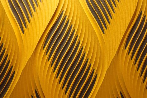 FORESCOLOR textured MDF panels can be laminated and routed to create striking 3D effects.
