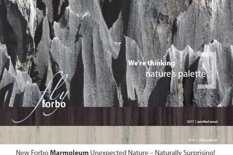 Marmoleum flooring by Forbo Flooring