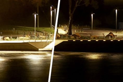 A car park with 100 percent illumination (right); and dimmed to 50 percent using Eco-Dim (right).