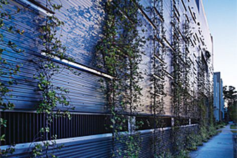 Ronstan Tensile Architecture cables create the essential structure for vertical gardens.