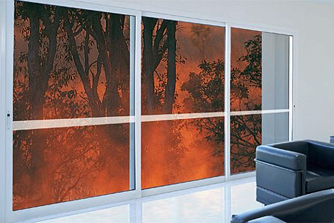 Bushfire-resistant doors and windows