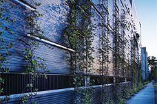 Ronstan green facade cables