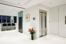 Domus Evolution home lift